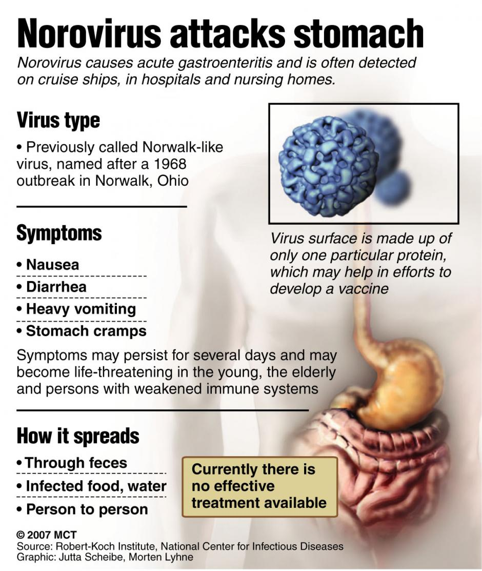Norovirus Disinfection and control